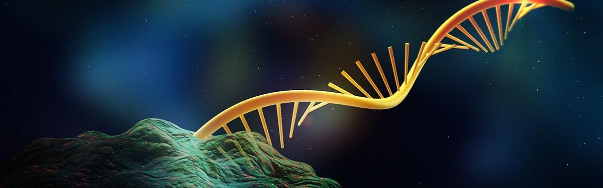 The University of Michigan Center for RNA Biomedicine
